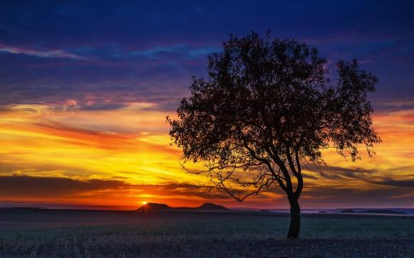 sunset-3067567_1280